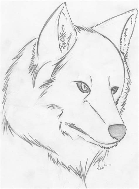 L Drawing Easy by Easy Drawings Of Wolves Www Imgkid The Image