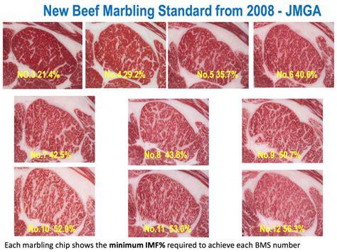 wagyu steak marbling beef marbling johnny prime