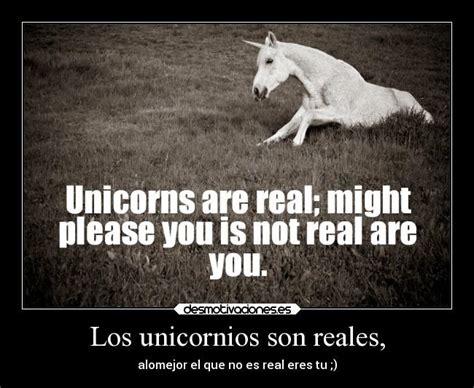 imagenes de unicornios bebes reales los unicornios son reales desmotivaciones