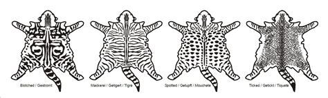 ott basic cat stripe image gallery tabby patterns