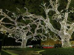 river oaks lights houston the world s best photos of and riveroaks