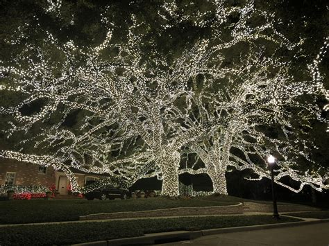 lights houston tx lights in river oaks houston decoratingspecial com