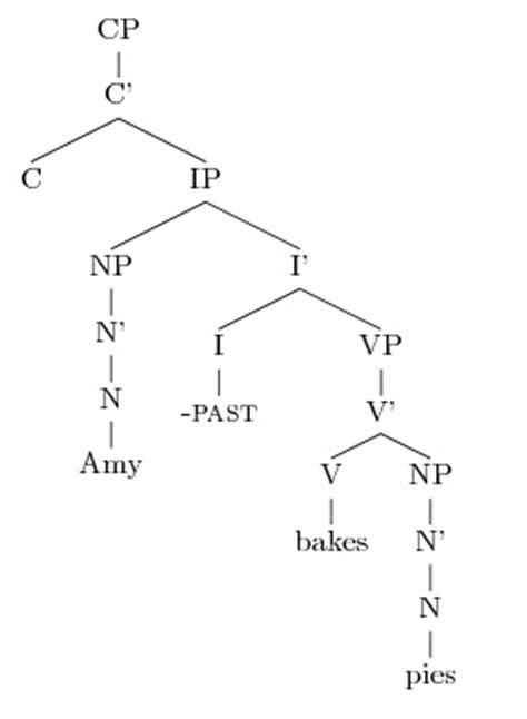 Syntax Tree Drawer by Drawing Sentence Syntax Trees