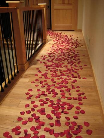 romance package   petals