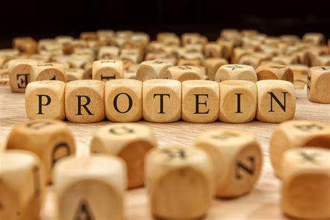 proteine quali alimenti alimenti ricchi di proteine la lista divisa per tipologia