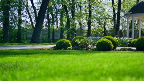 Green Garden by Beautiful Garden With Green Grass And Bush Stock