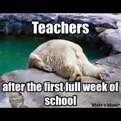 First Week Of School Meme - this about sums it up life throws you curves being