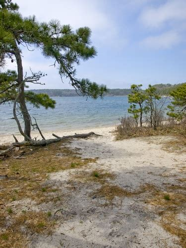 nickerson state park cape cod 160 best images about inspiring beautiful stuff on