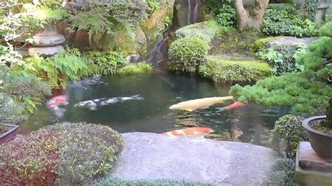 Garten Mit Wasserfall 263 by Modern Koi 263 Live From Japan Ein 5 000 Liter
