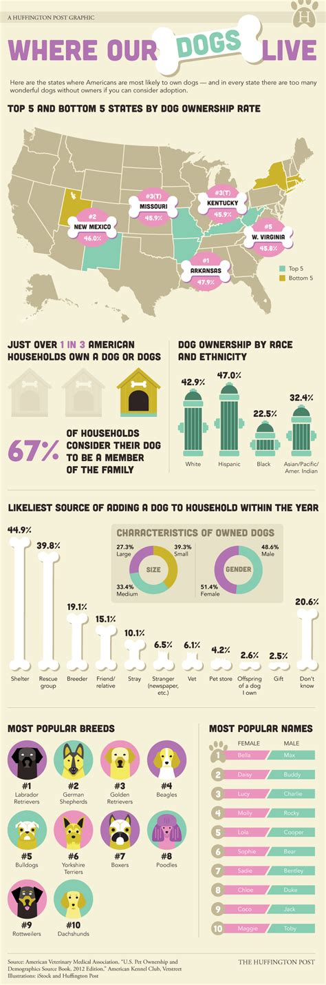 which state has the most dog owners per capita according to 2016 stats the most dog loving states in america infographic huffpost