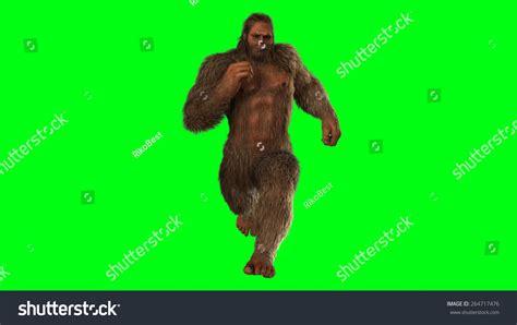 shutterstock stock bigfoot monster sasquatch bigfoot seperated on green screen stock