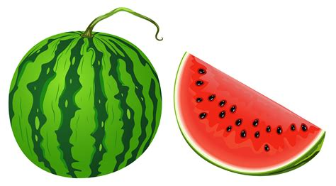watermelon png watermelon clipart transparent background clipartxtras