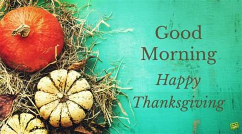 good morning  happy thanksgiving wishes