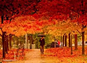 File autumn in toronto jpg wikimedia commons