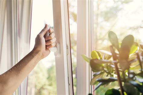 Everything You Need Vinyl - everything you need to about vinyl windows for your home