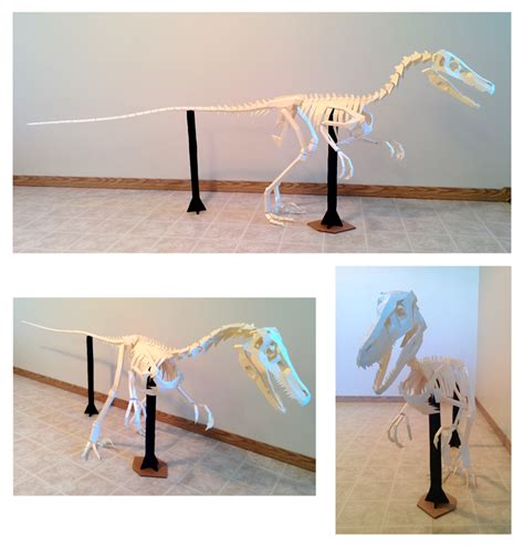 Make Your Own Paper Skeleton - velociraptor skeleton papercraft build by gedelgo on
