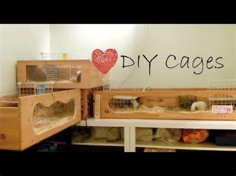 How To Find My House Plans by Homemade Guinea Pig Cages August 2013 Youtube