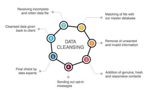 Data Detox by Who Offers Data Cleansing Or Data Scrubbing Services In