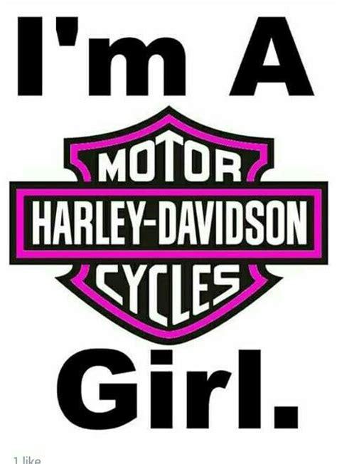 Harley Davidson Meme - 17 best images about harley memes toons biker sayings on