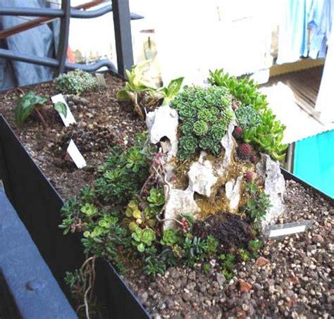 il giardino roccioso le jardin suspendu ovvero come trasformare un balcone in