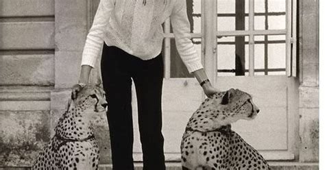 francoise hardy if we are only friends francoise hardy a world were cheetahs are so abundant we