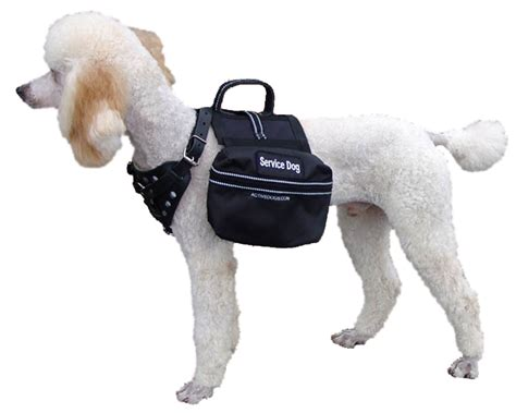 best dogs to as service dogs service supply working equipment service vests and harness vests