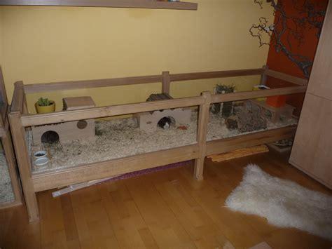 meerschweinchen stall bauen meerschweincheneigenbauten