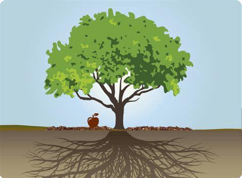 why the tree family trees pearlsofprofundity