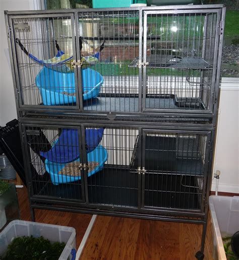 Furniture: Fabulous Ferret Cages For Sale For Charming Pet