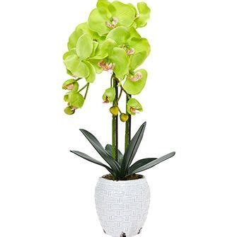 phalaenopsis orchid artificial potted plant artificial