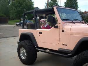 jeep wrangler this color stuff