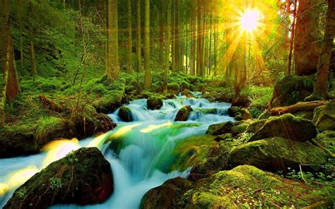 wallpaper 3d nature 1024x768 most beautiful nature wallpapers for mobilefuneral program