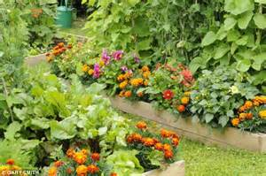 Blend flowers and vegetables for a plot that looks as good