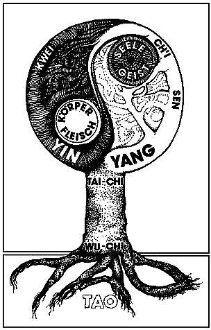 Bedeutung Yin Und Yang 5277 by Schattenblick Modelle 003 Das Ch I Konzept Teil 3 Ma