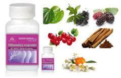 Slimming Capsule Green World Herbal Pelangsing obat herbal pelangsing biolo slimming capsule slimming