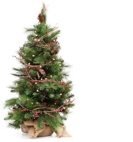 real table top trees wholesale christmas tree farms
