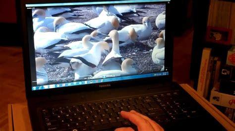 review  toshiba  satellite   laptop pc