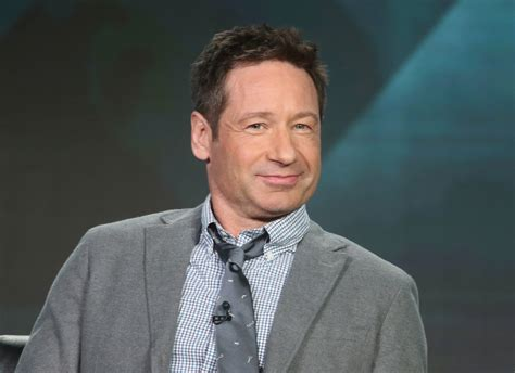 indian actor x files did david duchovny just confirm more x files episodes