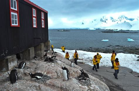 Small Home Building by Expedition Antarctica Why It S Worth Every Penny Round