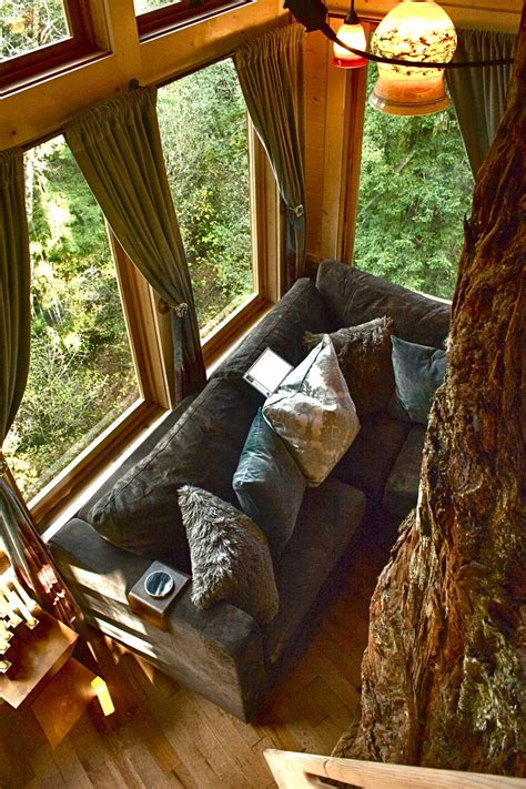 Treehouse Masters Luck O The Cottage by Treehouse Masters Inside Www Pixshark Images Galleries With A Bite