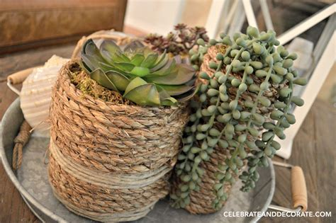 diy succulent diy succulent vases celebrate decorate