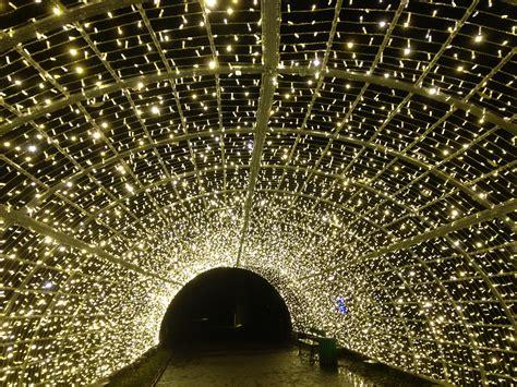 so the den christmas was den garden berlin so besonders macht wildes berlin
