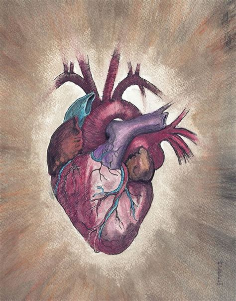 unique heart tattoos 1596 best anatomical images on