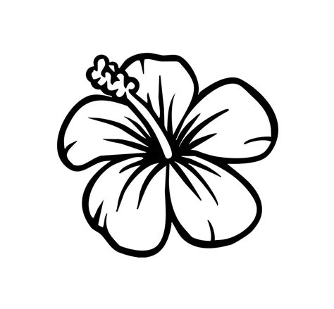 Where To Buy Kitchen Island by Unique And White Hibiscus Clip Art Black Images