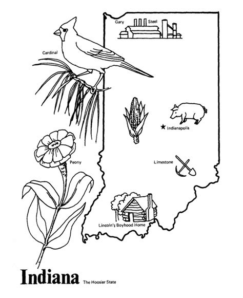indiana state flower coloring page indiana state quartz clock soy candles n craftssoy