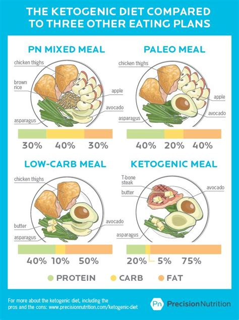 Precision Nutrition Detox by Best 25 Ketogenic Diet Results Ideas On Keto