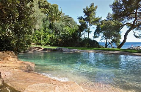 natural pool pics of natural swimming pools yahoo search results