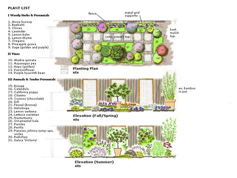 Designing A Flower Garden Layout Seed And Bean 187 Guest Post