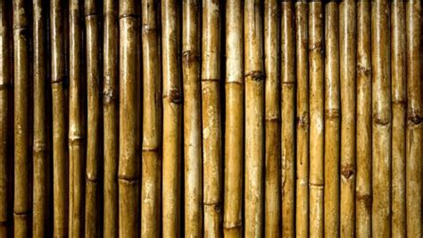 breaking the bamboo ceiling breaking the bamboo ceiling 28 images astonishing