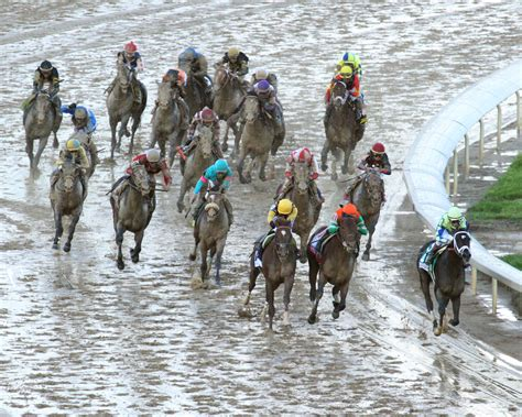 kentucky derby followup always dreaming but few others